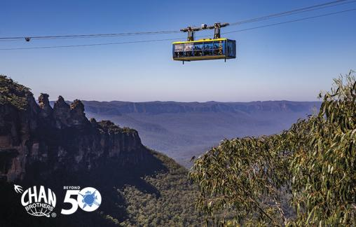 The Scenic Skyway cabin at Scenic World Katoomba passing over the Jamison Valley in the Blue Mountains